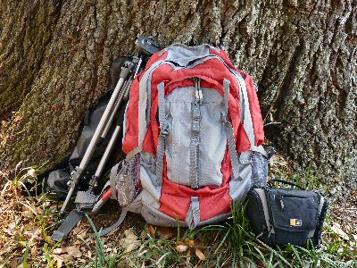 Backpack by tree trunk
