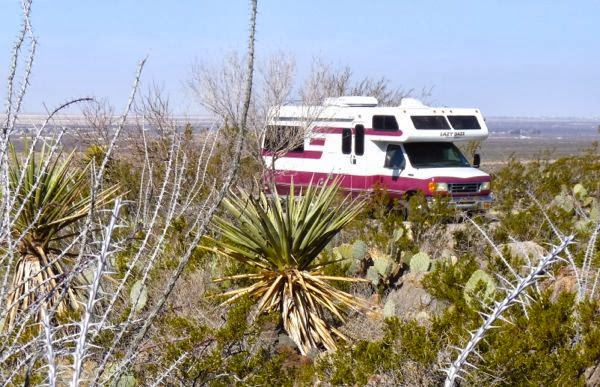 Cacti, motorhome, valley