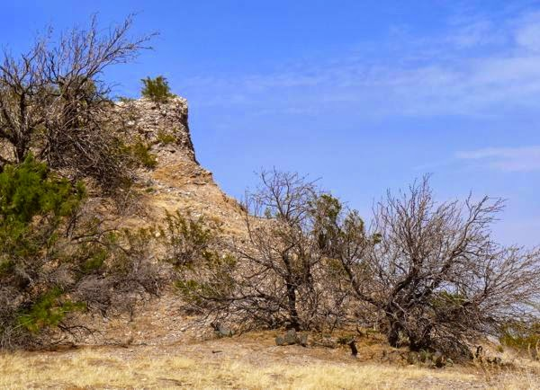 Cliff rising above trees