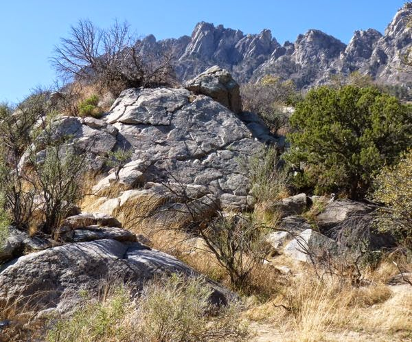 Rocks, trees, and rugged mountain