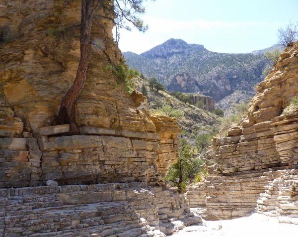 Narrow canyon with rock cliffs