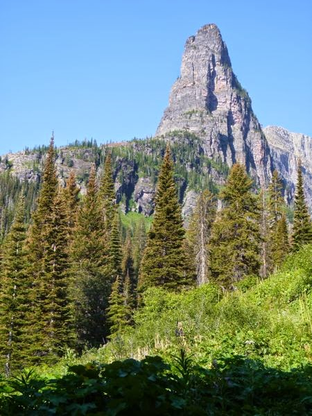 Pointed mountain and pine trees