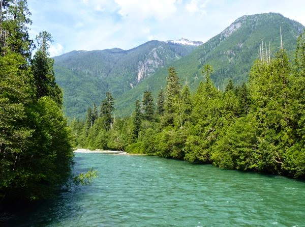 River, pines, mountains