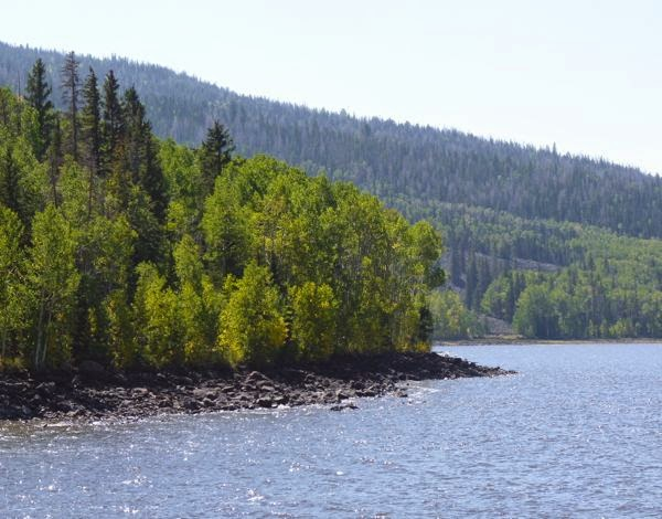 Lake with trees on distant shore