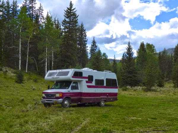 RV camped by tall pines