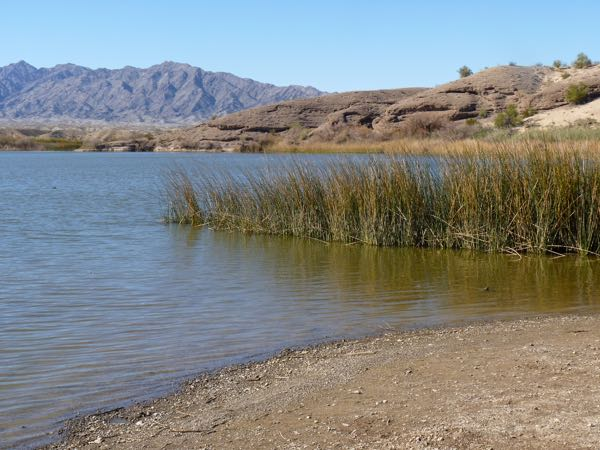 Beach water, reeds, mountain