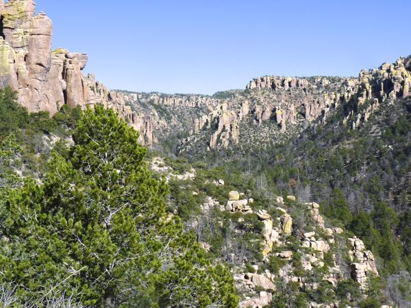 Canyon, trees, rocks