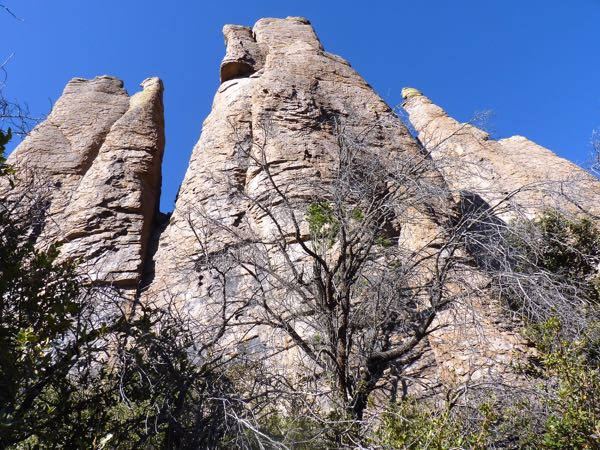 Tall rock cliffs, trees