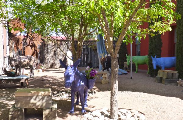 Patio, burros, trees