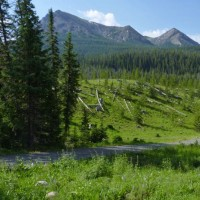 Custer NF-Colter CG