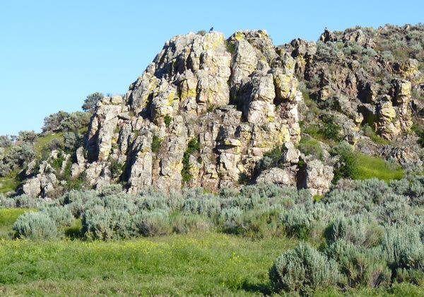 Rock formtion, sage
