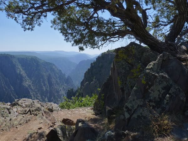 Canyon, tree, rocks