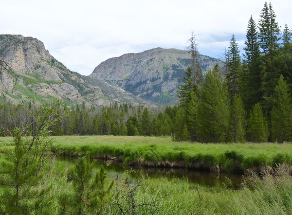 Stream, meadow, trees, mountains