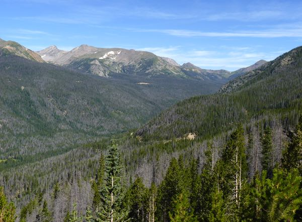 Mountains, valley, trees