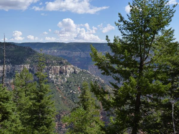 Canyon, trees, clouds, cliff