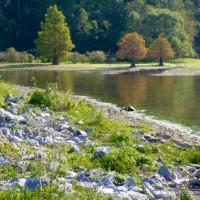 Land Between the Lakes, Fenton Lake CG